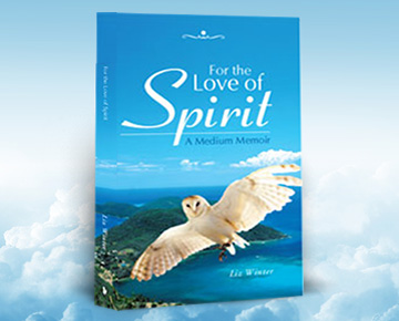 For The Love of Spirit